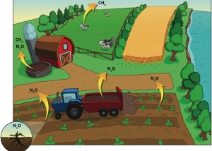 Illus_GES_agriculture_final