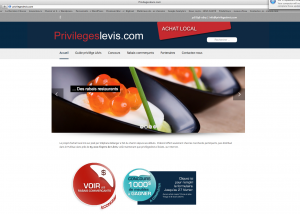 Privilegeslevis.com